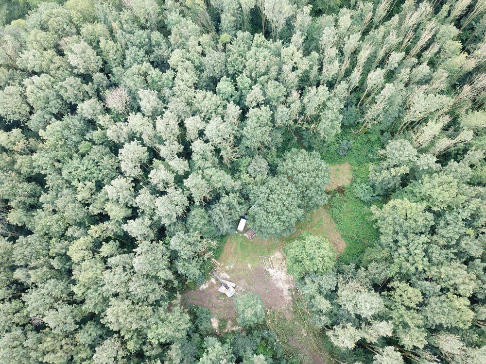 Werkzaamheden essenbos drone 2 kl